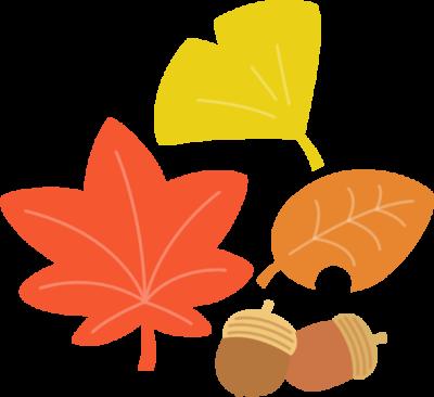紅葉した落ち葉とどんぐりのイラスト