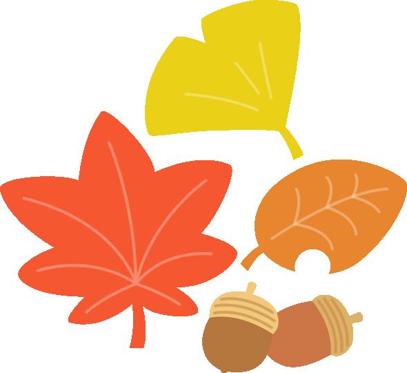 紅葉した落ち葉とどんぐりのイラスト イラストストック