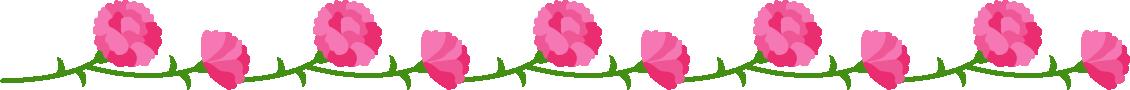 カーネーションのライン飾り罫線イラスト(ピンク)