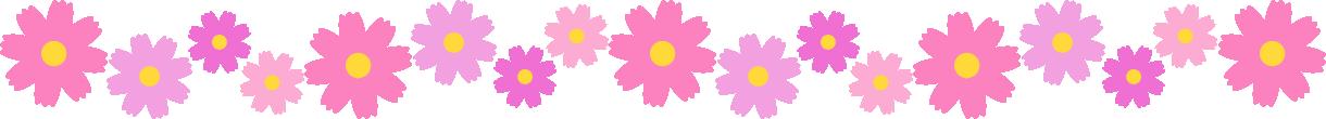 コスモスの花のライン飾り罫線イラスト(大)