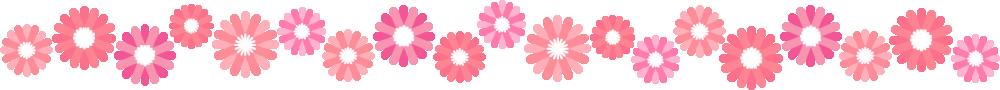 ガーベラのライン飾り罫線イラスト(ピンク)