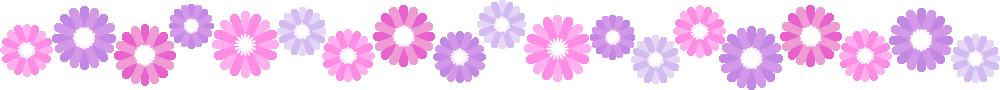 ガーベラのライン飾り罫線イラスト(紫)