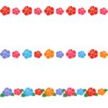 ハイビスカスのライン飾り罫線イラスト