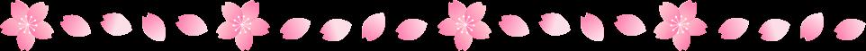 桜の花びらのライン罫線イラスト2