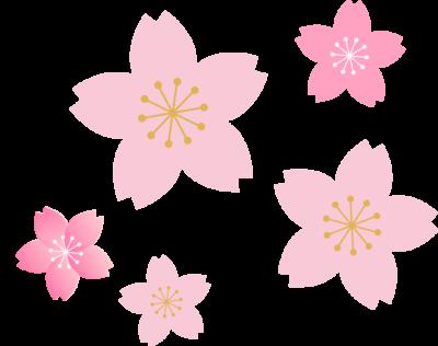 綺麗な桜のイラスト